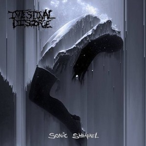 INTESTINAL DISGORGE - Sonic Shrapnel - CD